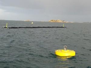 Plataformas para algas