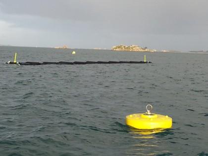 Culture offshore d'algues