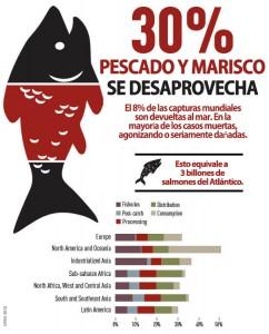 Desperdicio pescado en el mundo
