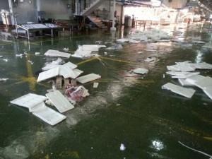 Residuos de poliestireno en mercado pesquero