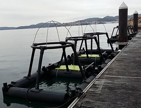 jaulas de plastico marinas cuadradas
