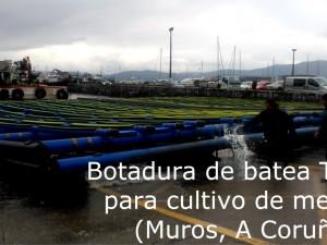 Botadura de batea para cultivo de mejillón en Muros