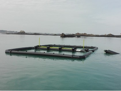 Floating seaweed farms