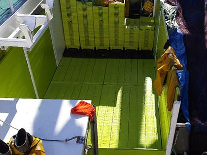 Carpinteria naval de plastico