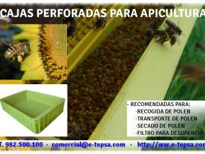 Cajas de plástico para recoger el polen de abeja en las explotaciones de apicultura