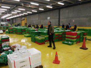 Cajas de plástico para pescado en Ondarroa