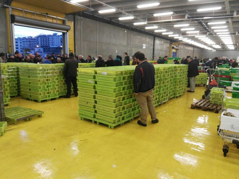 Cajas de plástico TEPSA con Anchoa