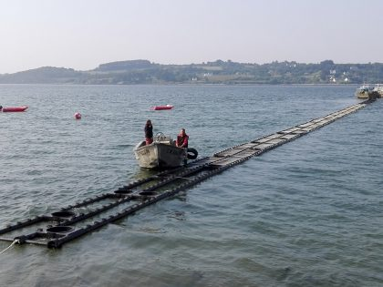 Pipe long-line for offshore oyster farming