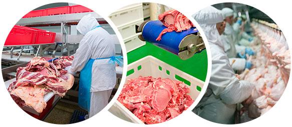 Plantas de procesado de carne