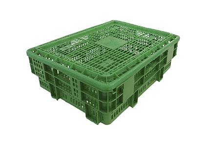 Caja para caracoles