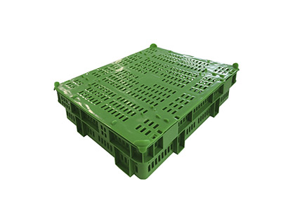 Shellfish crate (6kg)