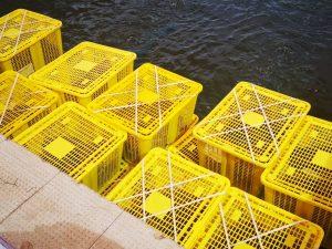 Cestas de marisco con tapa