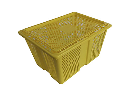 Shellfish crate (9kg)