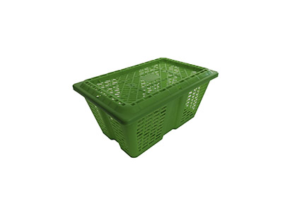 Shellfish crate (3kg)
