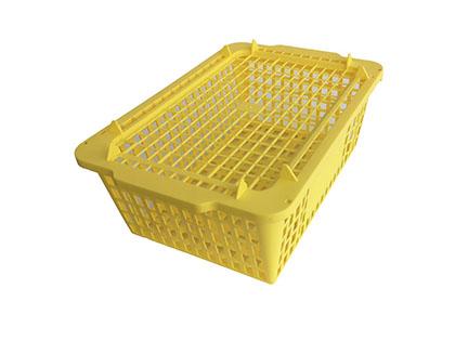 Shellfish crate (5kg)
