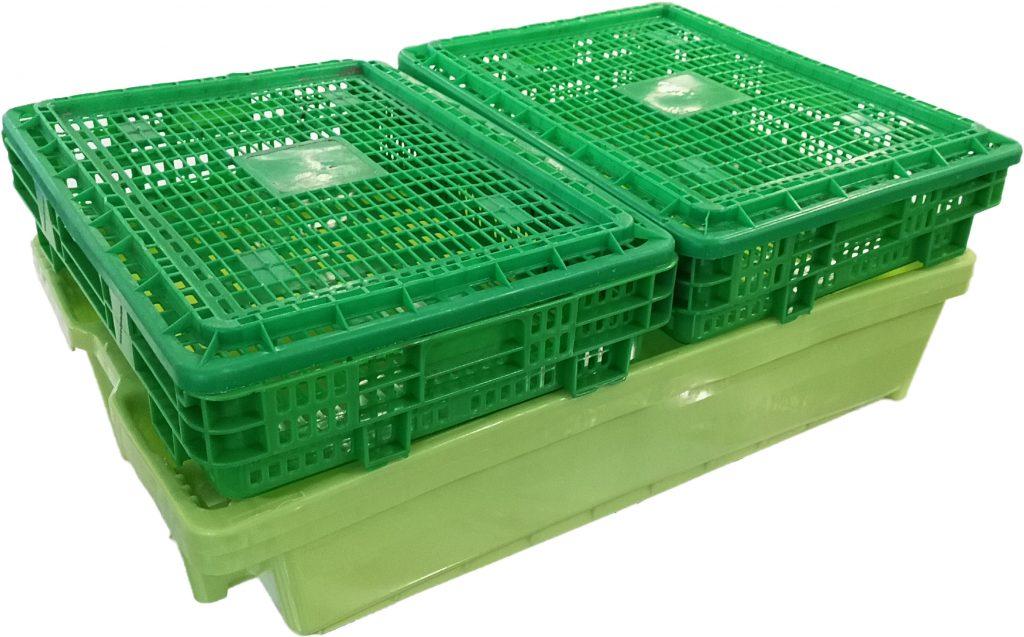 Cestos de marisco apilados sobre caja de pescado