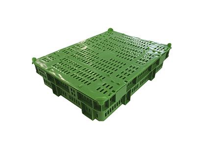 Shellfish box (4Kg)