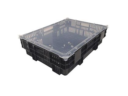 Shellfish box (6kg)