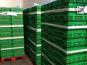 Cajas de plastico verdes en palets rojos en el secadero de una fabrica de confituras