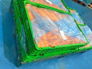Cajas de plastico reutilizables de color verde con naranjas cortadas para confitar