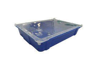 Shellfish tray 40x30x7cm