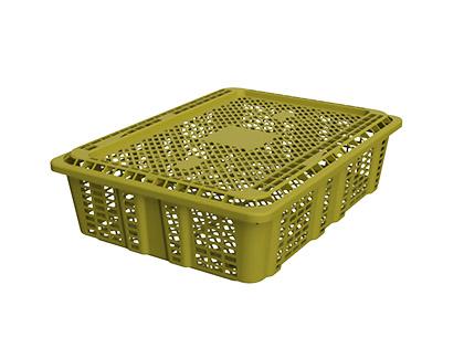 Shellfish crate (3-6kg)